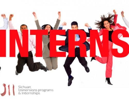 4 golden tips to determine the best international internship!