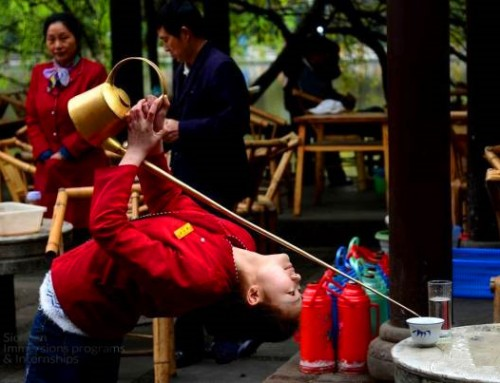 The top teahouses you should visit during your internship in Chengdu!